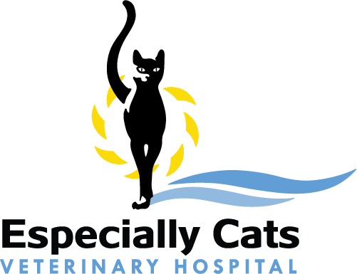 Especially Cats Veterinary Hospital
